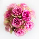 bouquet_lionel